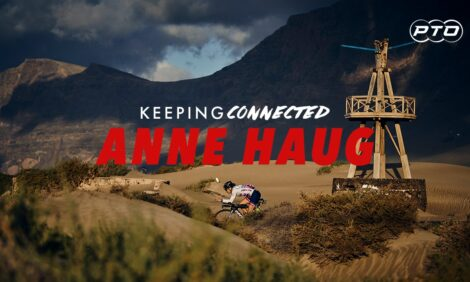 Keeping Connected with Anne Haug